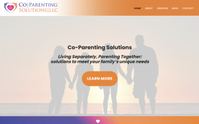 Co-Parenting Solutions